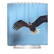 Eagle Through The Trees Shower Curtain