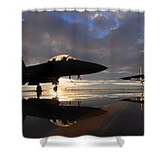 Eagles Sunset Shower Curtain