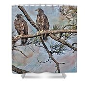 Eaglets In Oil Shower Curtain