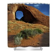 Ear Of The Wind Arch Shower Curtain