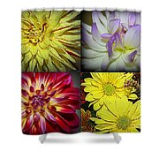 Early Autumn Blossoms Shower Curtain