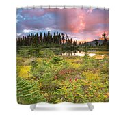 Early Autumn Meadow Sunset At Mt Baker Shower Curtain