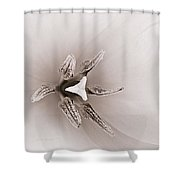 Early Blooming Tulip Shower Curtain