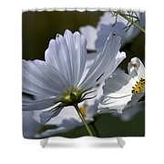 Early Dawns Light On Fall Flowers 02 Shower Curtain