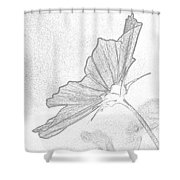 Early Dawns Light On Fall Flowers Bw Shower Curtain