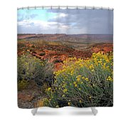 Early Evening Landscape At Arches National Park Shower Curtain