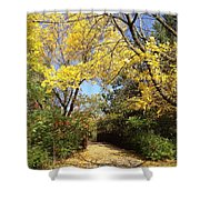 Early Fall 1 Shower Curtain