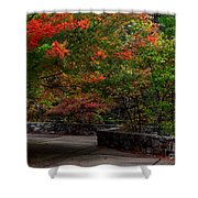 Early Fall At Talimena Park Shower Curtain