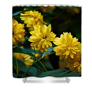 Early Fall Of Goldenglow Shower Curtain