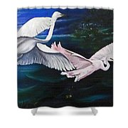 Early Flight Shower Curtain by Karin  Dawn Kelshall- Best