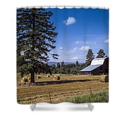 Early Harvest Shower Curtain