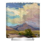 Early Morning At Thousand Palms Shower Curtain