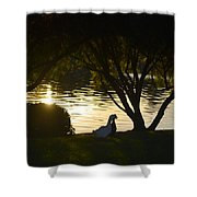 Early Morning Delight Shower Curtain