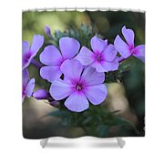 Early Morning Floral Beauty  Shower Curtain