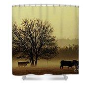 Early Morning Fog 008 Shower Curtain
