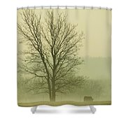 Early Morning Fog 016 Shower Curtain