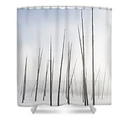 Early Morning Fog Drifts Through Dead Shower Curtain