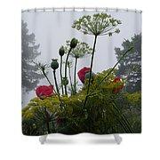 Early Morning Garden Walk Shower Curtain