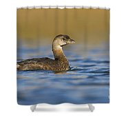 Early Morning Grebe Shower Curtain