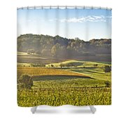 Early Morning Landscape In Fog Shower Curtain
