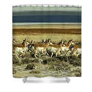 Early Morning Run-signed Shower Curtain