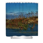 Early Morning Seascape Shower Curtain