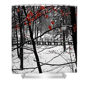 Early Snow 4 Shower Curtain