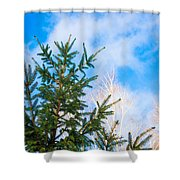 Early Spring - Featured 2 Shower Curtain