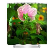 Early Summer Bloom Shower Curtain