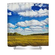 Early Summer Clouds Shower Curtain