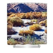 Early Summer Shower Curtain