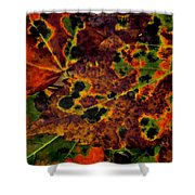Early To Fall Shower Curtain