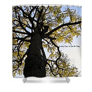 Earth Day Special - Ancient Tree Shower Curtain