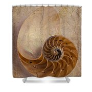 Earthy Nautilus Shell  Shower Curtain