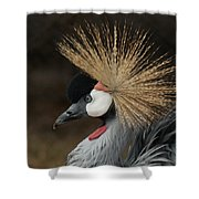 East African Crowned Crane 2 Painterly Shower Curtain