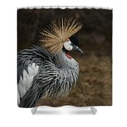 East African Crowned Crane Painterly Shower Curtain