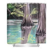 East Texas Cyprus In Pastels Shower Curtain
