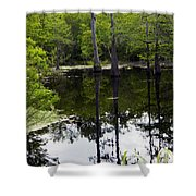 East Texas Cyprus Pond Shower Curtain