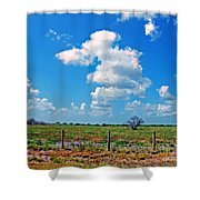 East Texas View Shower Curtain