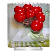 Easter And Sparrow Shower Curtain