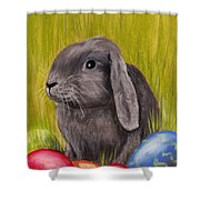 Easter Bunny Shower Curtain by Anastasiya Malakhova