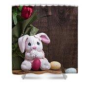 Easter Bunny Card Shower Curtain