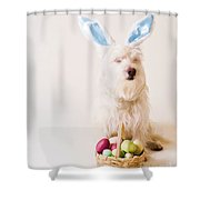 Easter Bunny Westie Shower Curtain