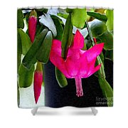 Easter Cactus Digtial Painting Square Shower Curtain