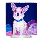 Easter Chachi Shower Curtain