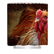 Easter Cock Shower Curtain