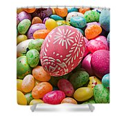 Easter Egg And Jellybeans  Shower Curtain by Garry Gay
