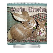 Easter Greetings - Bunnies Shower Curtain