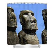 Easter Island 16 Shower Curtain