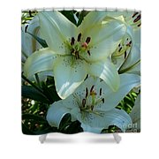 Easter Lily Shower Curtain